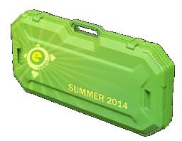 电竞 2014 夏季武器箱