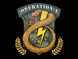 印花 | 服役徽章