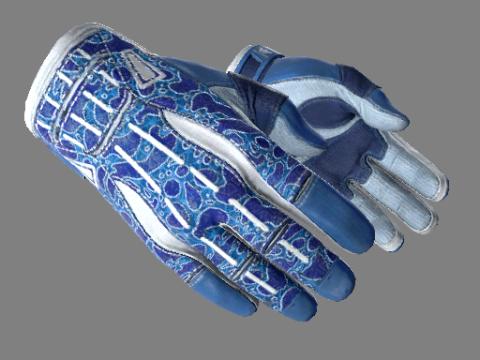 运动手套(★) | 双栖 (略有磨损)